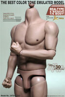 """IN-STOCK 1/6 Scale JXtoys S02 Muscular 12"""" Figure Body BW/Neck For Hot toys"""