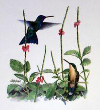 Dominica WWF Birds of the Caribbean ENVELOPPE  Premier Jour 1°  FDC  829