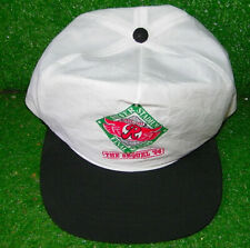 Vintage Rochester Red Wings Orioles Baseball Hat Silver Stadium Minor League