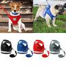 Mesh Dog Harness Leads Reflective Vest Pet Puppy Jacket French Bulldog Pug XS-XL