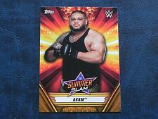 2019 Topps WWE Summerslam BRONZE 1 Akam RAW