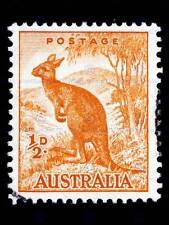 STAMP AUSTRALIA KANGAROO ANIMAL PHOTO ART PRINT POSTER PICTURE BMP1737B