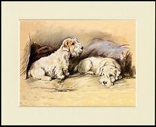 SEALYHAM TERRIER TWO DOGS ON SEAT LOVELY DOG PRINT MOUNTED READY TO FRAME