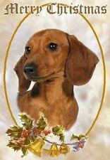 Dachshund Dog A6 Christmas Card Design XDA-18 by paws2print