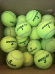 1 2 4 8 10 or 25 used high-quality TENNIS BALLS good condition! DOG TOYS WALKERS