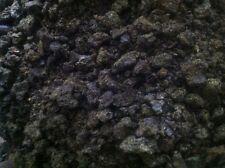 Hanfpellets für Pferde   --Mühlenfrisch--   5 kg