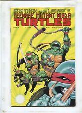TEENAGE MUTANT NINJA TURTLES #26 - OLD MAN RIVER! - (8.0) 1989