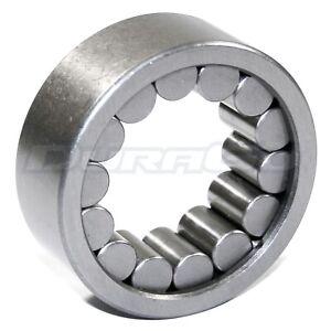 Wheel Bearing Rear IAP Dura 295-13067
