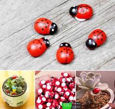 FD1469 Red Beetle Ladybug Fairy Garden Miniature Ladybird Dollhouse Decor ~5PCs~
