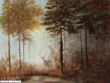 Rare Quiet Forest, Wildlife  Deer stag  art print by Gerald Coulson,  smaller