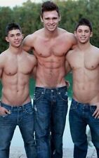 Shirtless Male Muscular Beefcake Hunk Trio Ripped Abs Sexy Men PHOTO 4X6 C1509