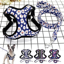 Reflective Dog Harness Leash Soft Small Medium Dog Cat Step In Mesh Walking Vest