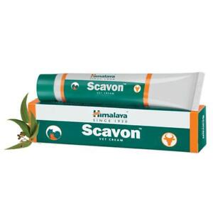Himalaya scavon vet Cream anti infection antifungal antibacterial 50GM