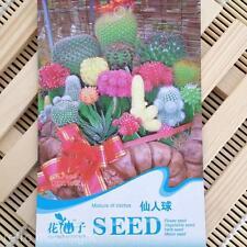 2 Packungen Pflanze Sanmen Kaktus Samen IN Garten lasen zu Hause