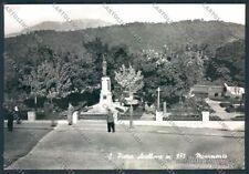 Isernia San Pietro Avellana FG foto cartolina MV8904