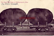 1911 THE KIND WE RAISE IN WILLIAMSPORT, OH giant potatoes on A.T. & SF. rail car