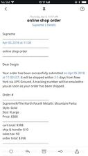 Supreme x The North Face Metallic Mountain Parka Gold Size XL SS18 TNF Confirmed