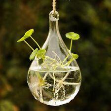 Vidrio colgantes jarrón planta maceta terrario contenedores casa boda Dekor