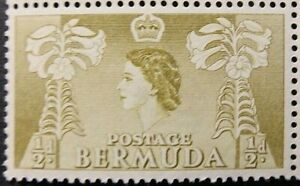 BERMUDA 1954 SG135a. QEII ½d. YELLOW-OLIVE  -  MNH