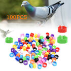100pcs Bird Ring Leg Bands for Pigeon Parrot Finch Canary Hatch Poultry Rings
