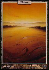 Plains Foil | NM | UNHINGED | Magic MTG