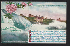 1909 Spokane Falls Washington state flower Rhododendron postcard