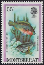 MONTSERRAT Striped Parrot Fish 55c MNH @BM206