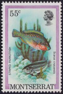 MONTSERRAT Striped Parrot Fish 55c MNH @BM206