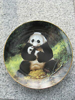 ASSIETTE DE COLLECTION PORCELAINE Décor PANDA 21,5 cm