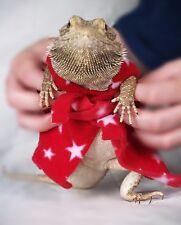 Bearded Dragon Bath Robe Harness Costume Bed Blanket Reptile Rat Accessories