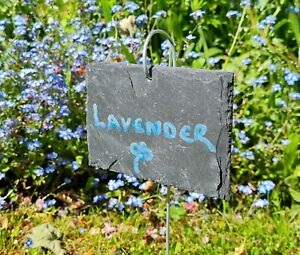 10 Natural Slate Hanging Garden Plant Markers Label Tags Vegetables 10cm x 8cm