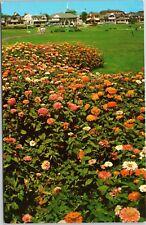 Ocean Park Floral Display
