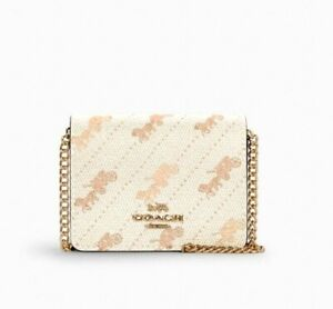 NWT Coach Mini Wallet on A Chain Cream with Horse And Carriage Dot Print C4477