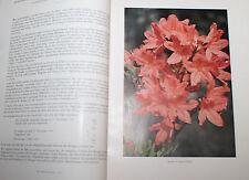 Deutsche Rhododendron-Gesellschaft: Jahresbericht 1942 Botanik sehr selten!