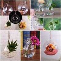Hängende Glaskugel Vase Blumen Blumentopf Terrarium Container Partei Hochzeitsde