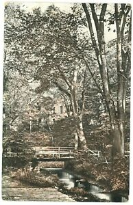 View Of Small Pedestrian Bridge Inside The Forest Postcard