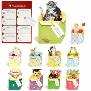 54 3D Pop-up Greeting Cards for all Occasions (EG)