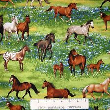 Country Farm Fabric - Band of Horses Green Pasture Scene - Robert Kaufman 23""