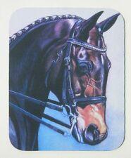 Dressage Horse Equestrian art mouse Pad warmblood
