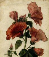 Dessin Ancien Original XIXème - Nature Morte, Bouquet de Fleurs