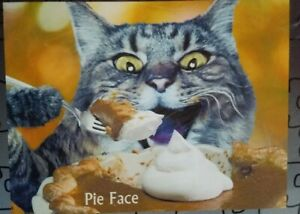 The Edge Cat Pie Eating Puzzle 1,000 Piece's Only Edge Parts