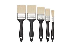 Economy Flagged tip Paint brush, Set of 5