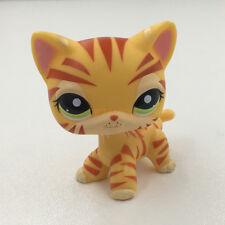 Littlest Pet Shop Rare Short Hair Tiger Cat Kitten LPS Children Kids Toys #1451