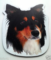 ***Black and White Collie Dog Magnet***Anywhere / Car Magnet