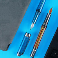 Wingsung 3013/Paili 013 Negative Pressure Fountain Pen Ink Writing Gift  G /-