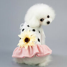 Mesh Dog Clothes Pet Skirt Various Small Dog Cocolmax Costumes Strap Pet Clothes
