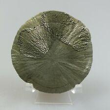 Pyritsonne     151