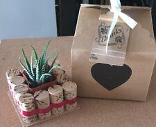 Aloe Live Succulent Plant In Wine Cork Vase ~Birthday ~Decor Or Gifts Handmade