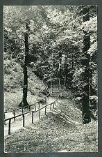 Montferland  Trap Oostzijde