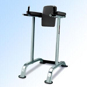 Beinheber,BH-Fitness,Dip Ständer,L800B,Kraftgerät,Rückentrainer,Bauchtrainer